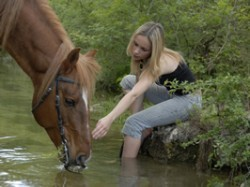 Equine therapy can help you throughout your recovery!
