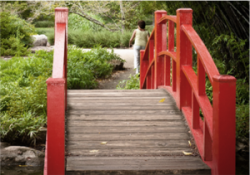 Take the steps you need to, so you can have a lasting recovery after drug rehab.