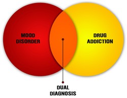 Dual diagnosis can be the best way to go in treatment for people with mental disorder problems.