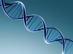 There is a link between drug addiction and genetics.