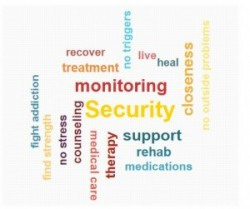 providing-support-and-monitoring
